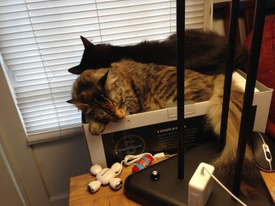 Fritz and Tigress, hard at work