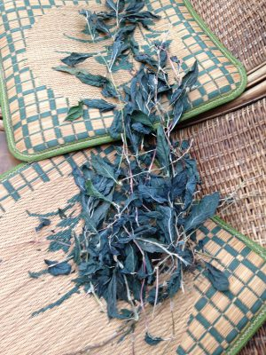 dried indigo