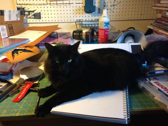 Fritz helping me draw