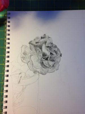 2nd rose sketch