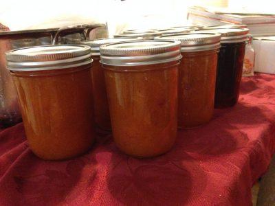 aprium jam - from our aprium tree!