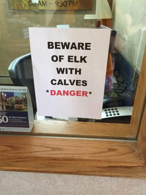 "sign ""beware of elk"""