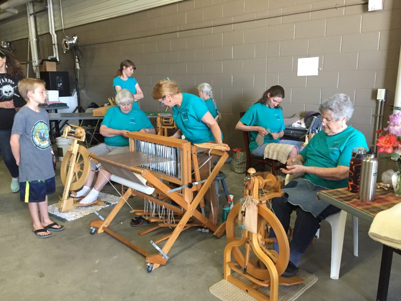 sheep to shawl contest at Estes Park