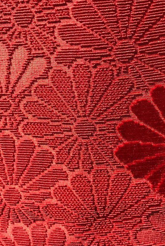closeup of Japanese velvet