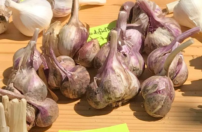 Godfather's Italian garlic