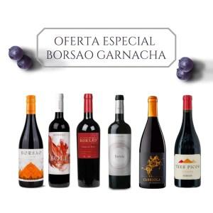Promoción Especial DESCUBRIENDO LA GARNACHA