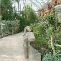 Das Wüstenhaus in Wien
