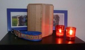 Tompina S. - Möglichkeiten der Bestattung (Urne)
