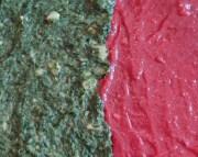 Lisa M - rot-grünes Weihnachtsgebäck für carnivoren