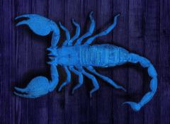 Samirah S Leuchtender Skorpion
