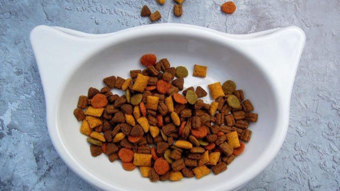 Trockenfutter Katzenernährung