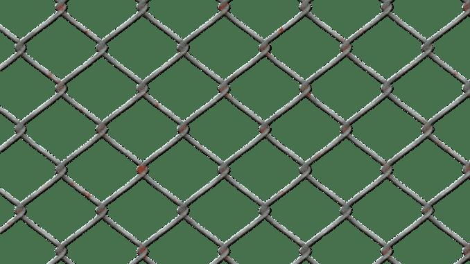 draht-zaun-katzenfalle-gitter-falle