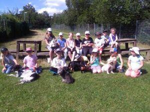 Kids & Dogs - Minis (5-6 Jahre) @ Tierheim Siegen | Siegen | Nordrhein-Westfalen | Deutschland