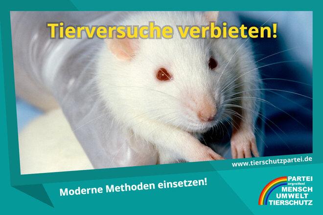 Petition gegen Tierversuche