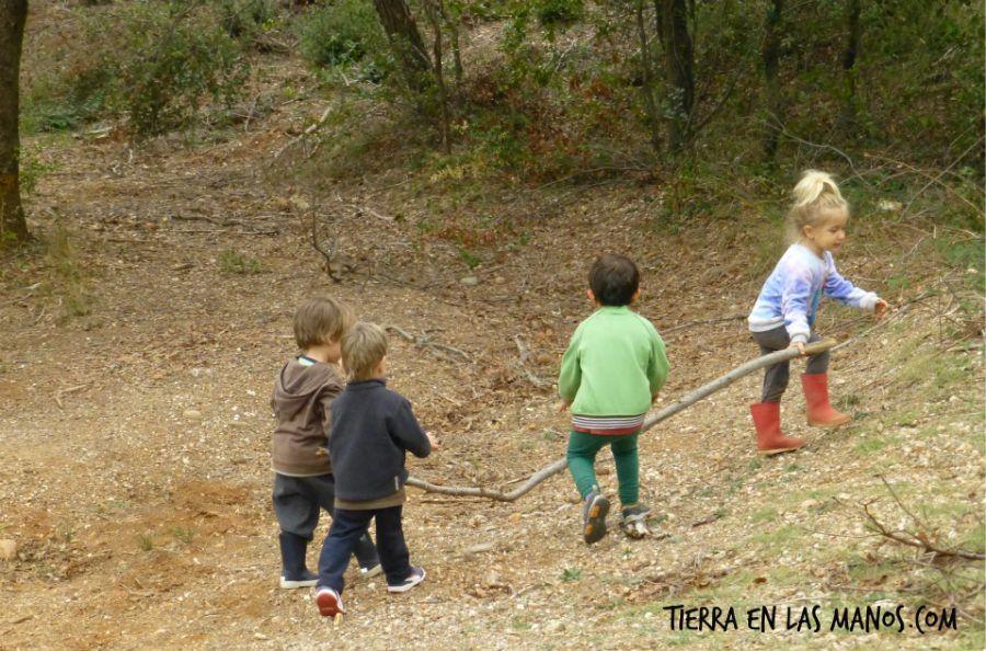 beneficios naturaleza - trabajo en equipo