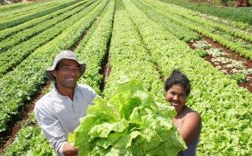 UN ALTO porcentaje de agricultores, aún siendo pobres, dispone de los recursos mínimos para empezar su desarrollo.