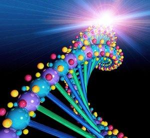 No se pueden patentar los genes humanos