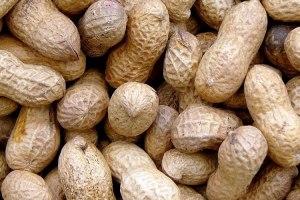 Gran avance contra las alergias a los cacahuetes y trigo