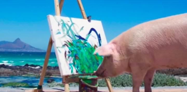 Cerdo pintor está conquistando el mundo del arte