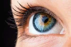 Estudiante crea una nueva retina sintética