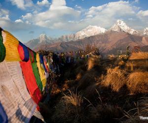trekking poon hill nepal