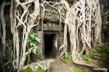 visitar angkor y alrededores