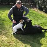 Jack Russel Terrier Mix Anna