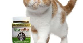 Litter Getter Review