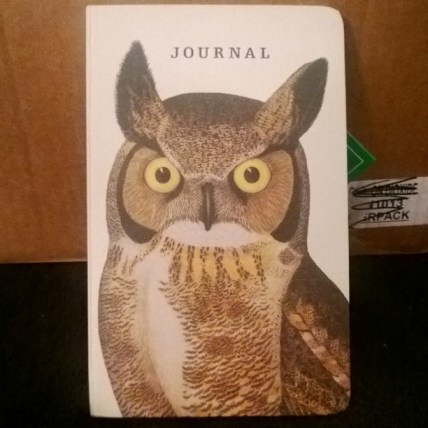 Cute Owl Journal