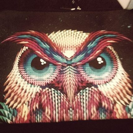 Owl 17' laptop Case