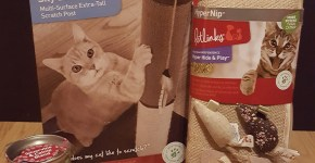 Petlinks for Cats