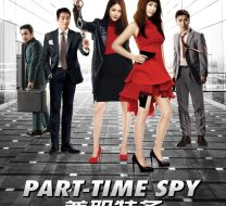 Part Time Spy Poster