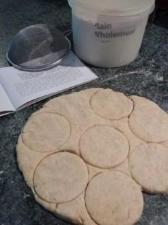 Wels Potato Cake dough waiting to be cut