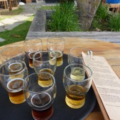 Tray of glasses of different beers, resting on a table in a garden.