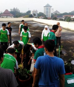 Green And Clean_238_280