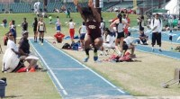 Terralyn Johnson led the Texas Southern Lady Tigers in the 2014 Texas State Invitational track and field meet in San Marcos, Texas. …read more Read more here: TSUBall.com