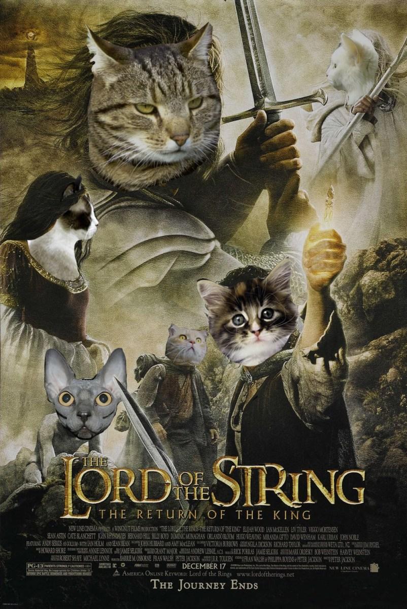 cats movie - photo #33