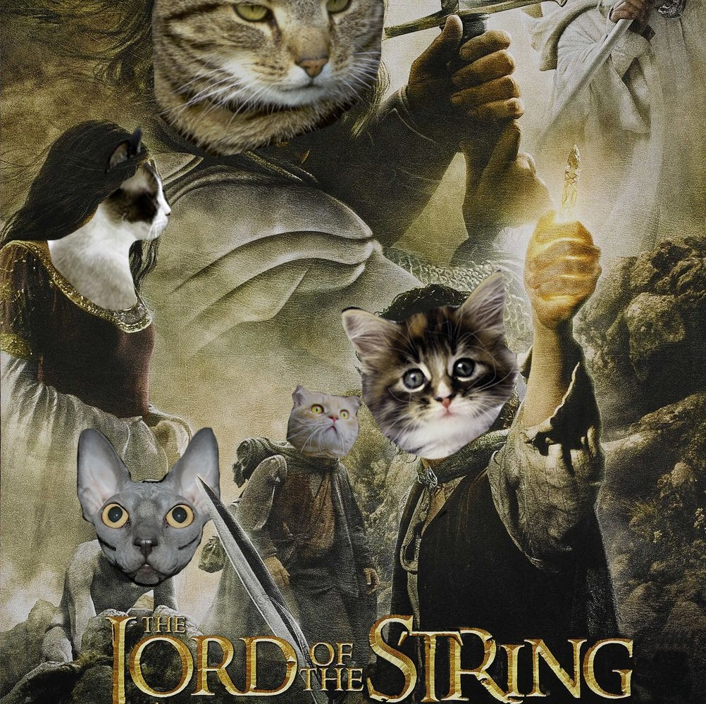 56 Movie Titles Made Into Cat Puns – Tiger Magazine
