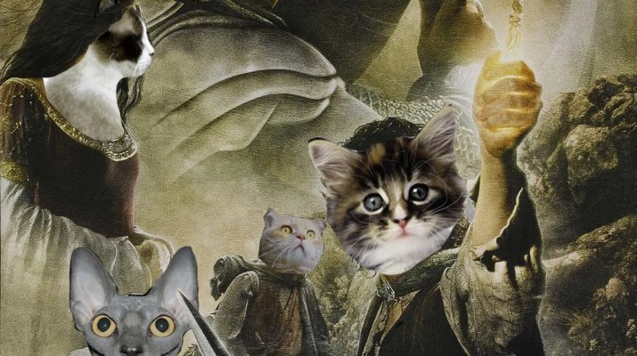 56 Movie Titles Made Into Cat Puns