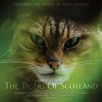 Horizontal poster for The Tigers Of Scotland