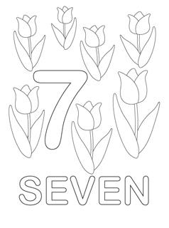 numarul_7