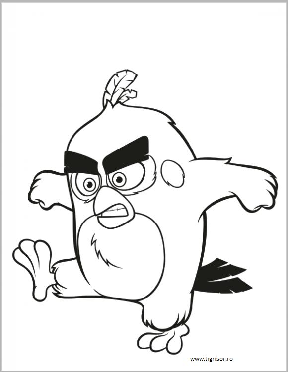Plansa De Colorat Cu Angry Birds 2 Tigrisorro
