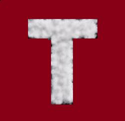 Nume de baieti care incep cu litera T