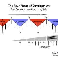 Los cuatro planos del desarrollo -  Montessori