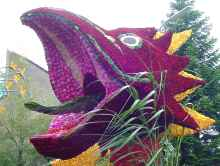 Bloemencorso drakenkop