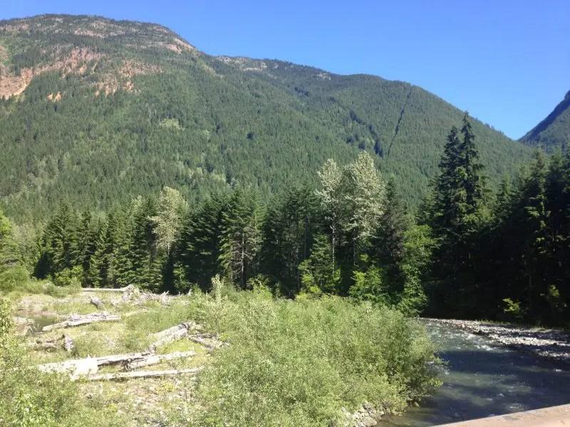 Skagit River Trail