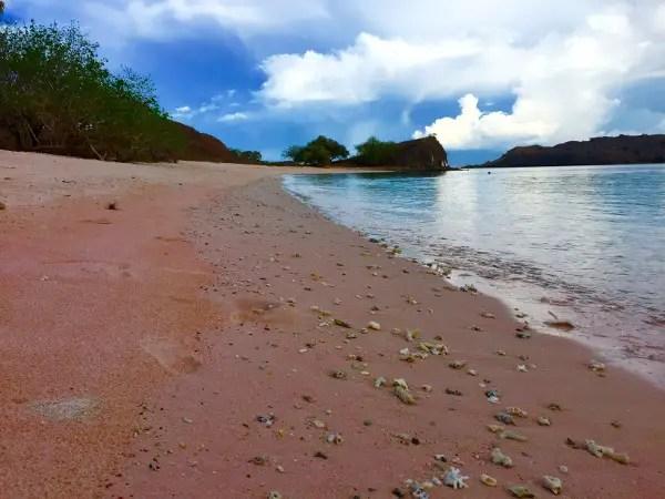 At Pink Beach, Komodo Island