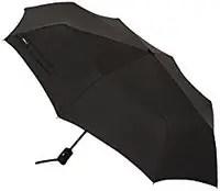 amazon basics umbrella for travel