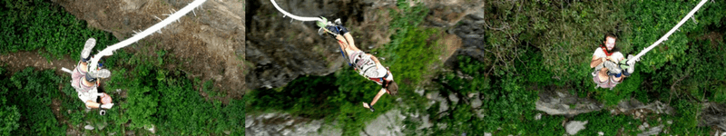 successful bungy
