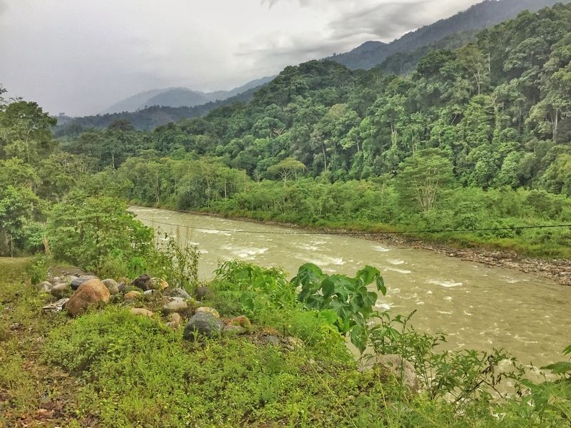 ketambe river